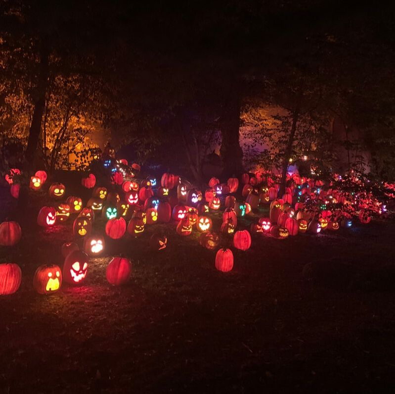 Newfields, Indianapolis: October Harvest Nights Tips, Tickets, and Tricks