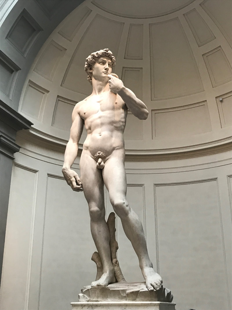 The David, Accademia, Florence. American Tourist Mistakes in Florence.