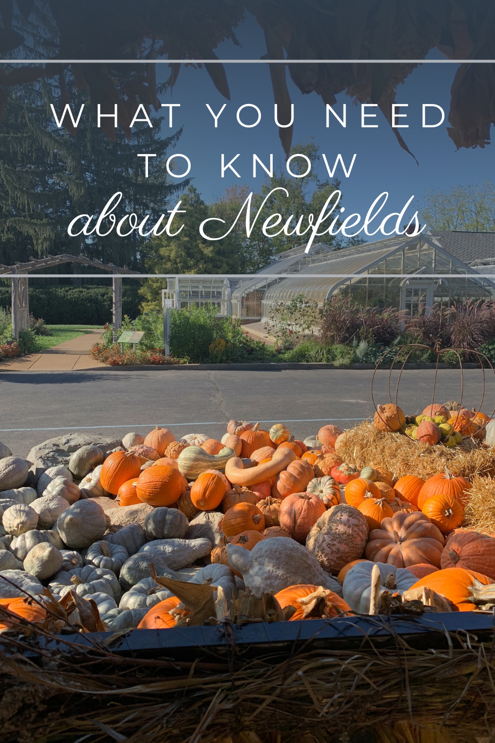 Visiting Newfields, Indianapolis