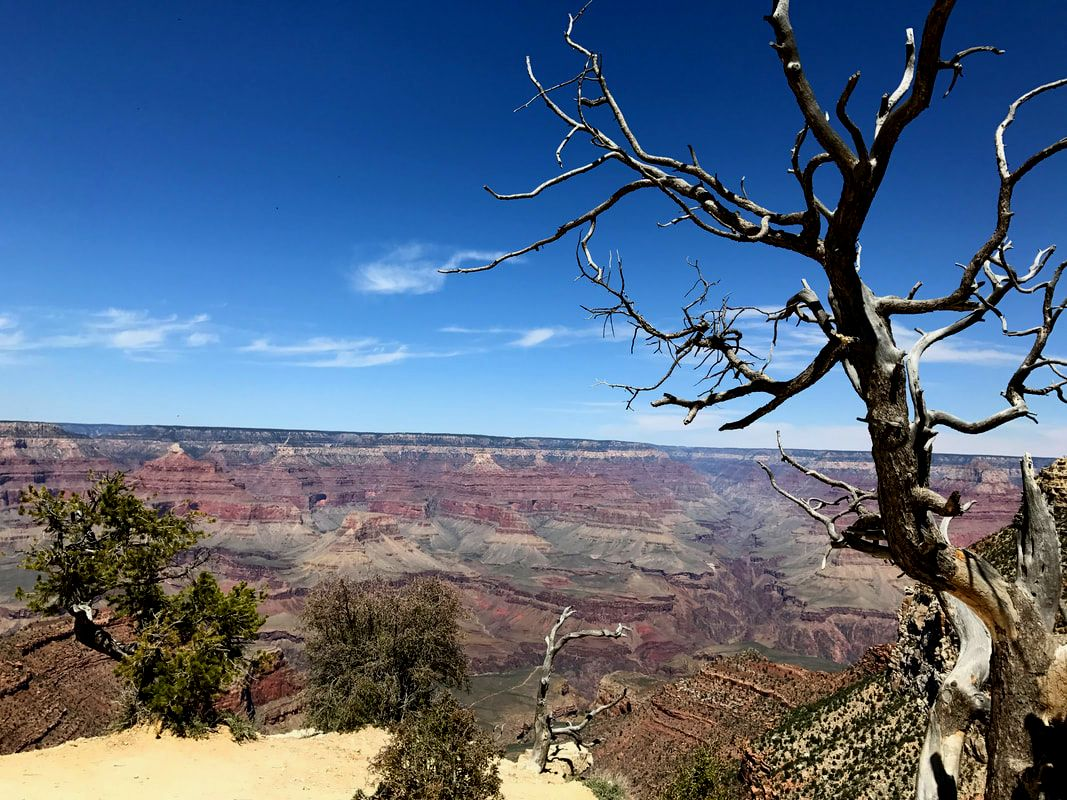 A day trip to the Grand Canyon from Sedona. Romantic Things to Do in Sedona, Arizona