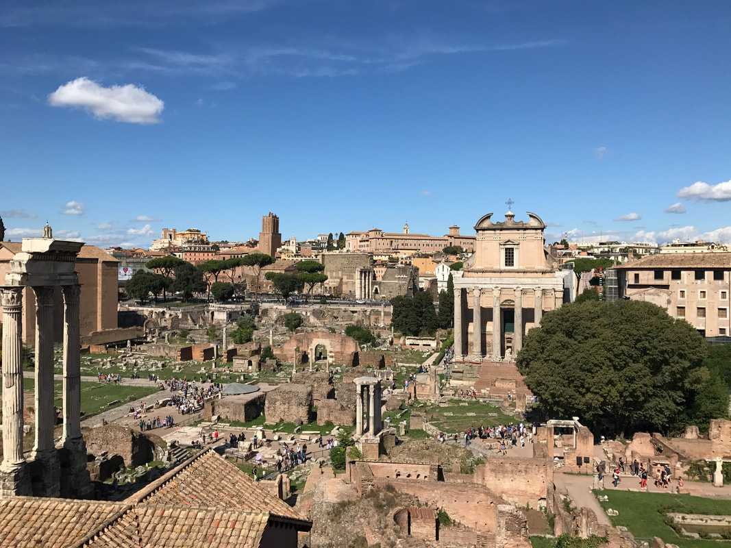 The Roman Forum from the Palatine Hill